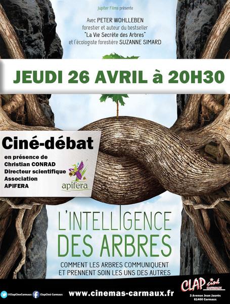 """Ciné-débat autour du film : """"L'intelligence des arbres"""""""